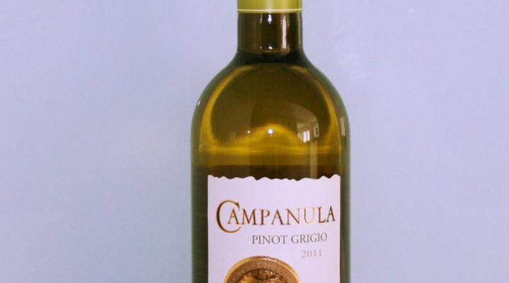 Campanula Pinot Grigio 2011